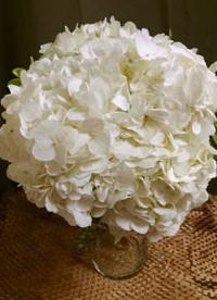 hydrangea-bouquet-min